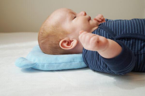Candide Panda Babykudde blå 3