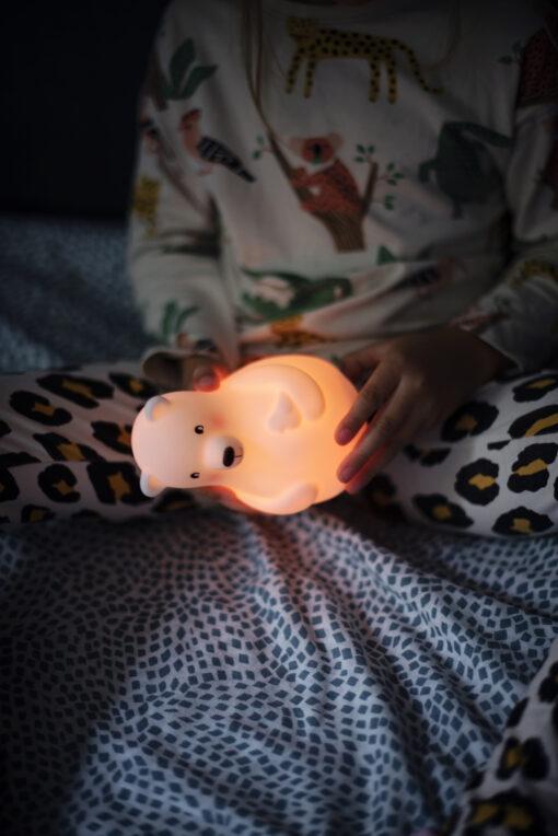 Pabobo Nattlampa Fargsensor Bjorn